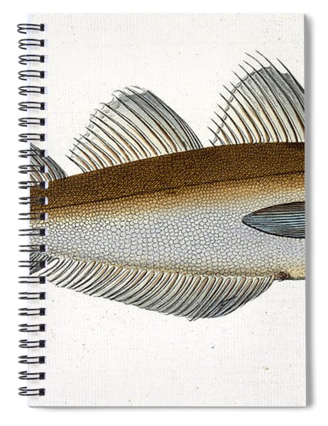 Whiting Spiral Notebook