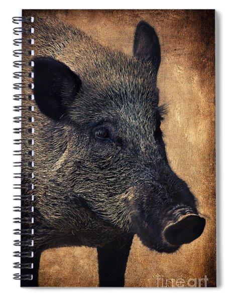 Wild Boar  Spiral Notebook