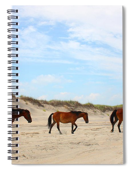 Wild Horses Of Corolla - Outer Banks Obx Spiral Notebook