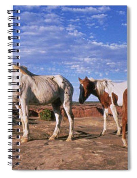 Wild Ponies Nm Usa Spiral Notebook