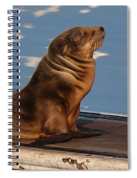 Wild Pup Sun Bathing - 2 Spiral Notebook