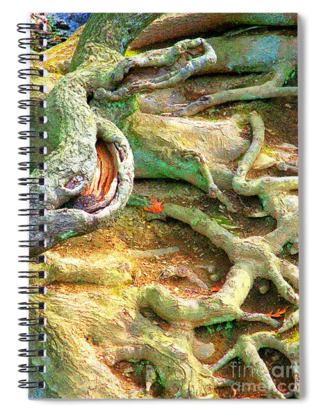 Wild Roots By Christopher Shellhammer Spiral Notebook