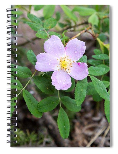 Wild Gentian Spiral Notebook