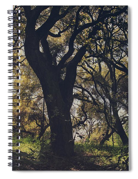 Wildly And Desperately My Arms Reached Out To You Spiral Notebook