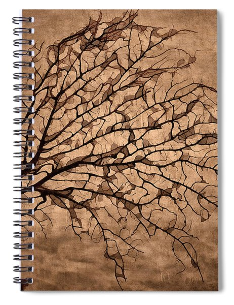 Windowpane Coral Spiral Notebook