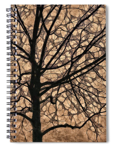 Windowpane Tree In Autumn Spiral Notebook