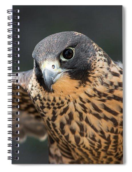 Winged Portrait Spiral Notebook