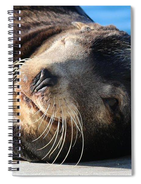 Wink Wink Spiral Notebook