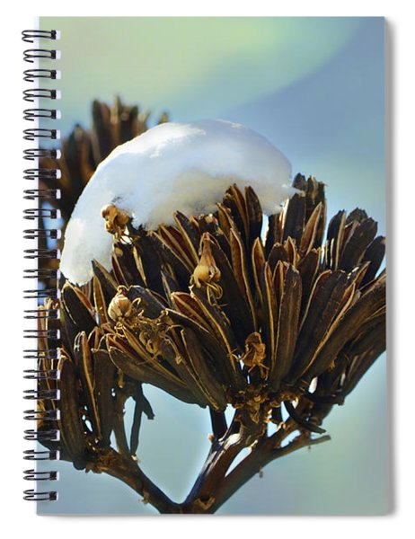 Winter Agave Bloom Spiral Notebook