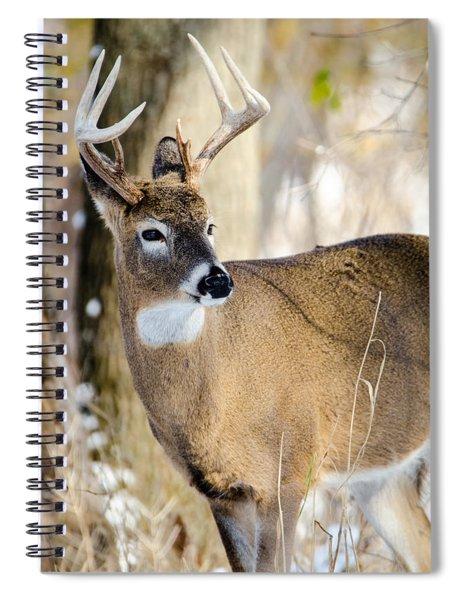 Winter Buck Spiral Notebook