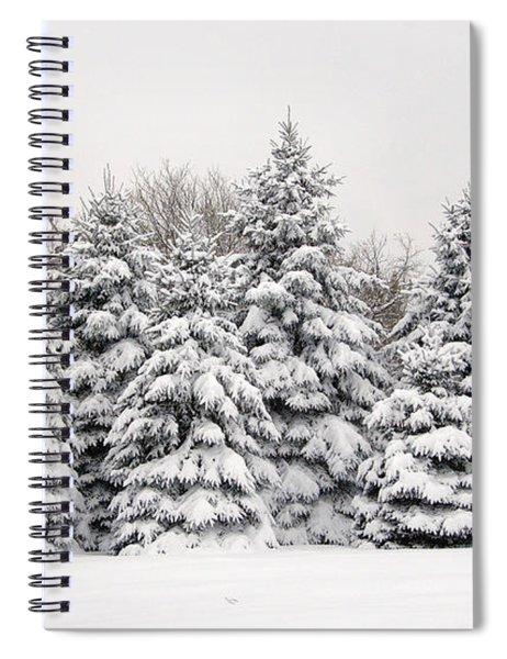 Winter Copse Spiral Notebook
