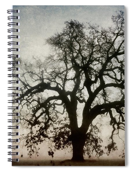 Winter Dawn Tree Silhouette Spiral Notebook
