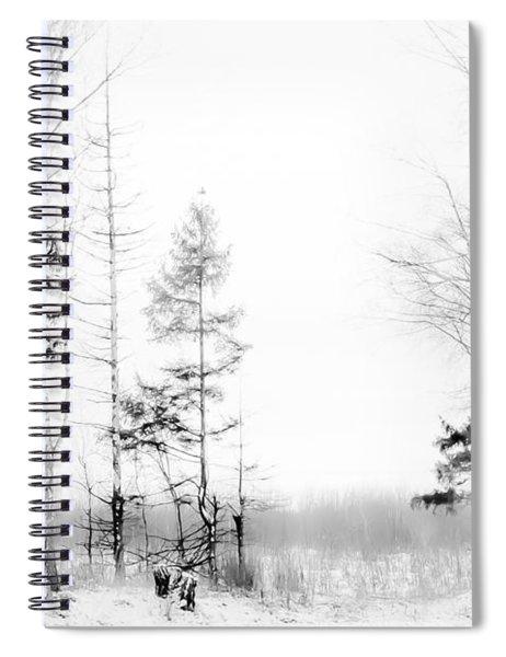 Winter Drawing Spiral Notebook