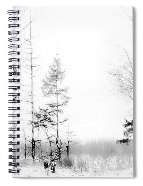 Winter Drawing Spiral Notebook
