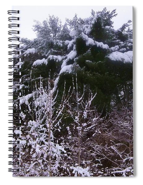Winter Haven Spiral Notebook