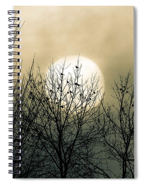 Winter Into Spring Spiral Notebook