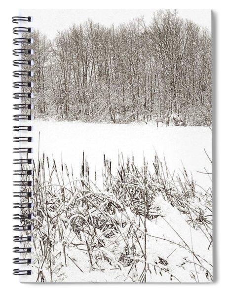 Winter Pond Spiral Notebook