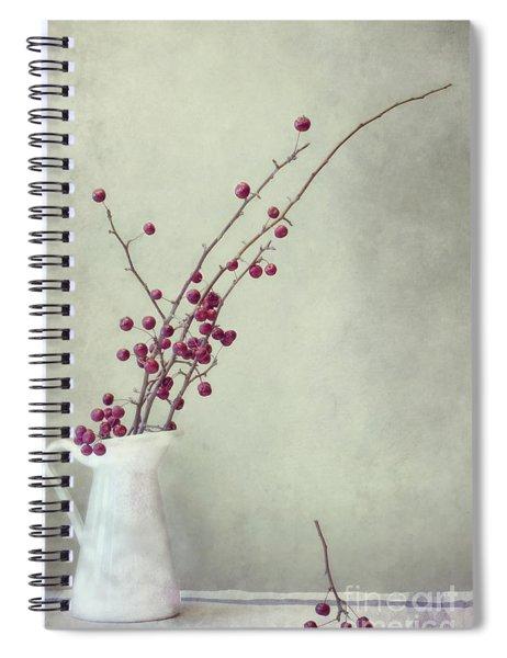 Winter Still Life Spiral Notebook
