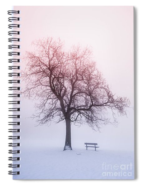 Winter Tree In Fog At Sunrise Spiral Notebook
