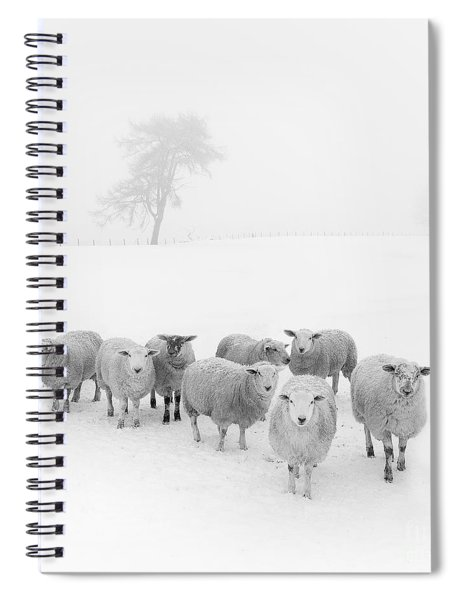 Winter Woollies Spiral Notebook