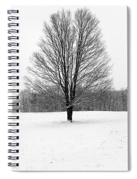 Winterclove Spiral Notebook