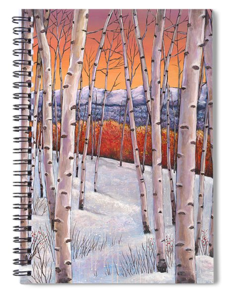Winter's Dream Spiral Notebook