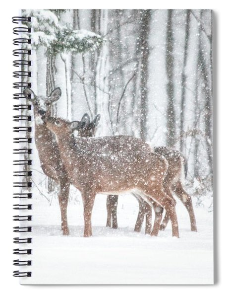 Winters Love Spiral Notebook