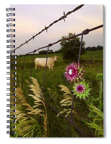 Wisconsin Evening Spiral Notebook