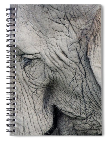 Wisdom With Age Spiral Notebook