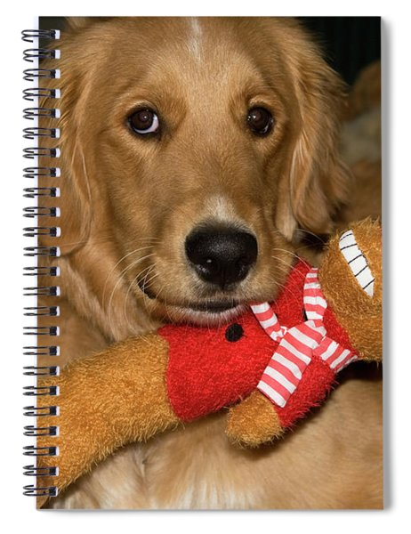 Wish For A Christmas Friend Spiral Notebook