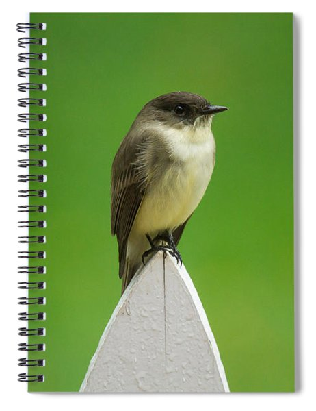 Spiral Notebook featuring the photograph Wish I Was The Twitter Bird by Robert L Jackson