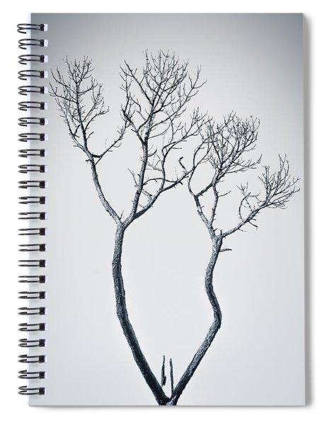 Wishbone Tree Spiral Notebook