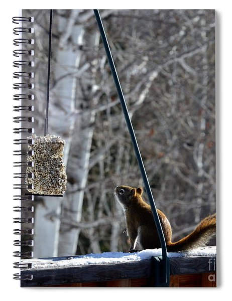 Wishin' 'n Hopin' Spiral Notebook
