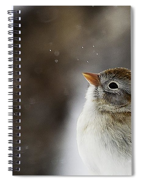 Wishing Upon A Snowflake  Spiral Notebook