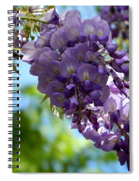 Wisteria Spiral Notebook