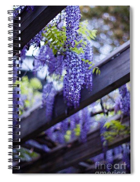 Wisteria Beams Spiral Notebook