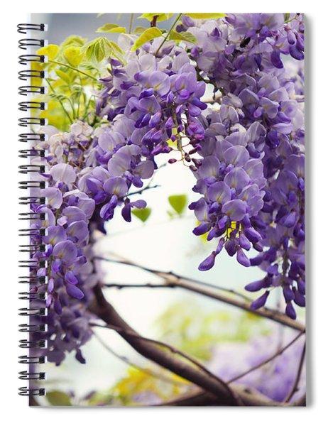 Wisteria Garden 1 Spiral Notebook