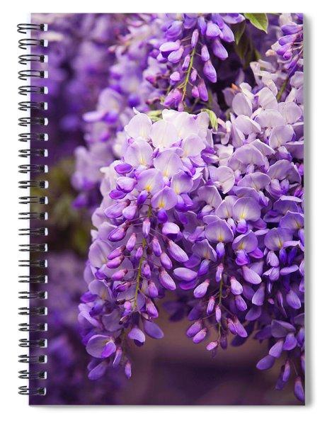 Wisteria Garden 3 Spiral Notebook