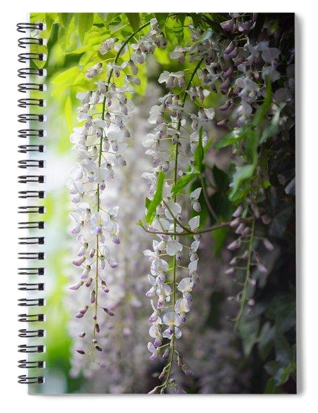 Wisteria Garden. White Wisteria Spiral Notebook