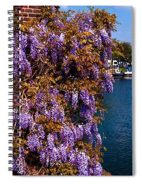 Wisteria On The Wall. Brielle. Netherlands Spiral Notebook