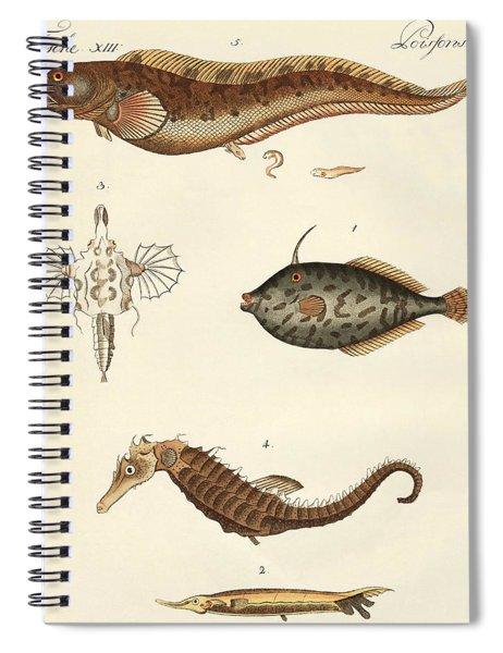 Wonderful Fish Spiral Notebook