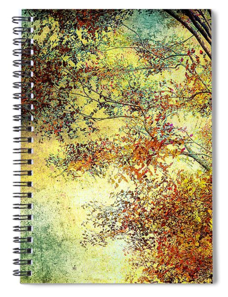 Wondering Spiral Notebook