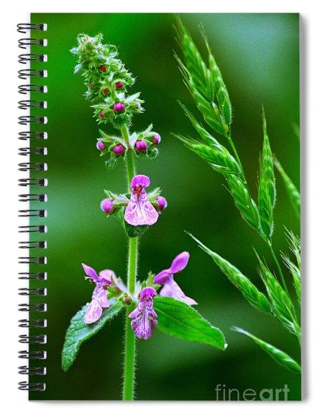 Wood Mint And Grass Spiral Notebook