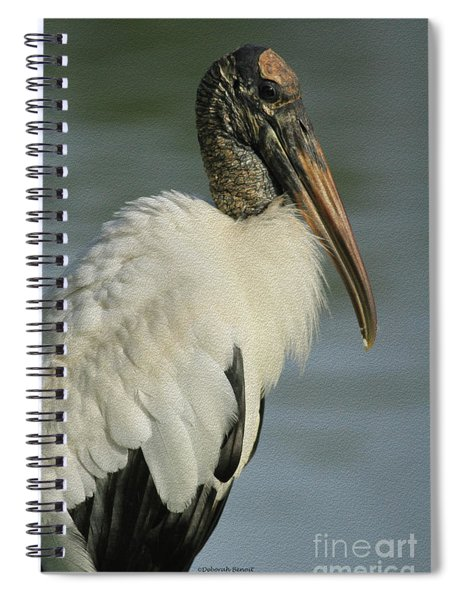 Wood Stork In Oil Spiral Notebook