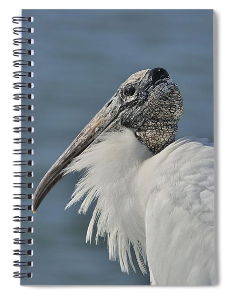 Wood Stork Portrait Spiral Notebook