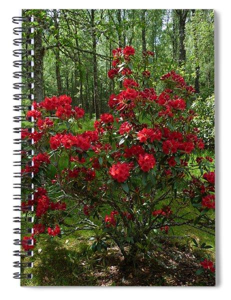 Red Azalea  Spiral Notebook