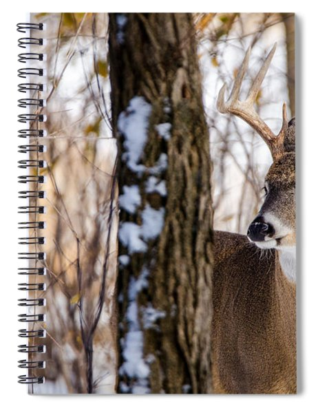 Woodland Outlaw Spiral Notebook by Steven Santamour