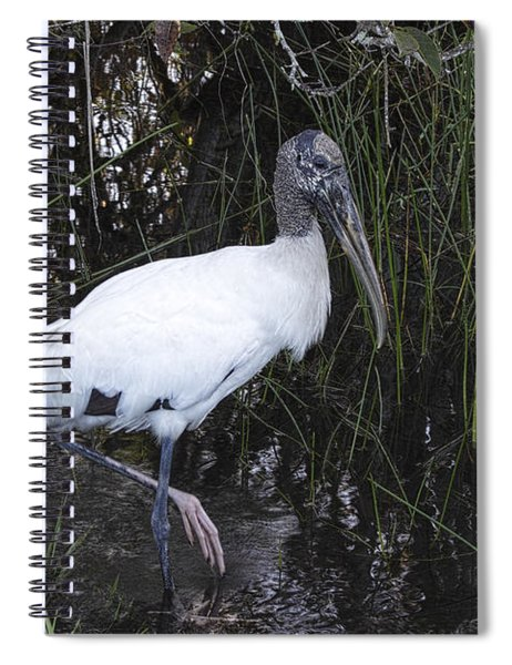 Woodstork Spiral Notebook