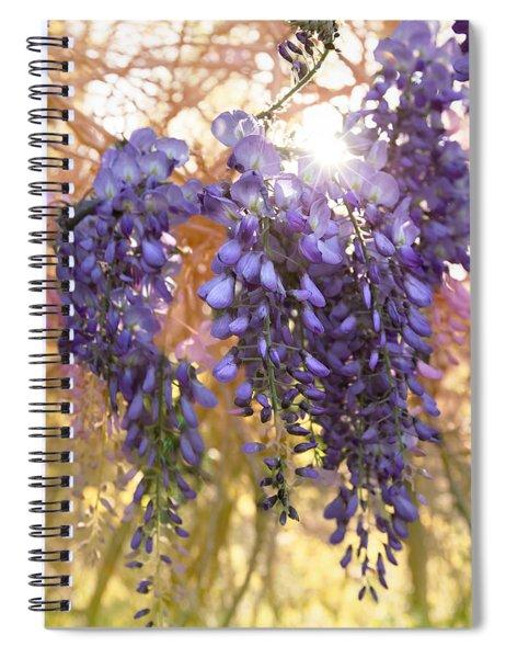 Wysteria Spiral Notebook