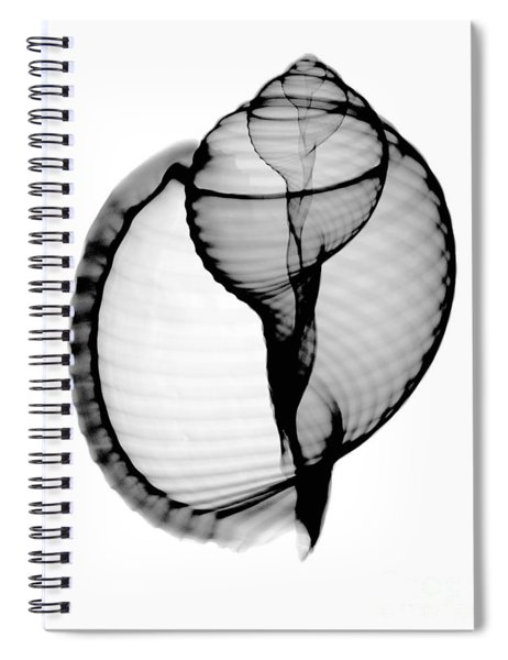 X-ray Of Scotch Bonnet Spiral Notebook